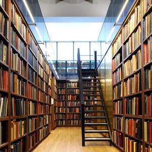 Библиотеки Западной Двины